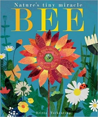 Nature books - Bee: Nature's tiny miracle